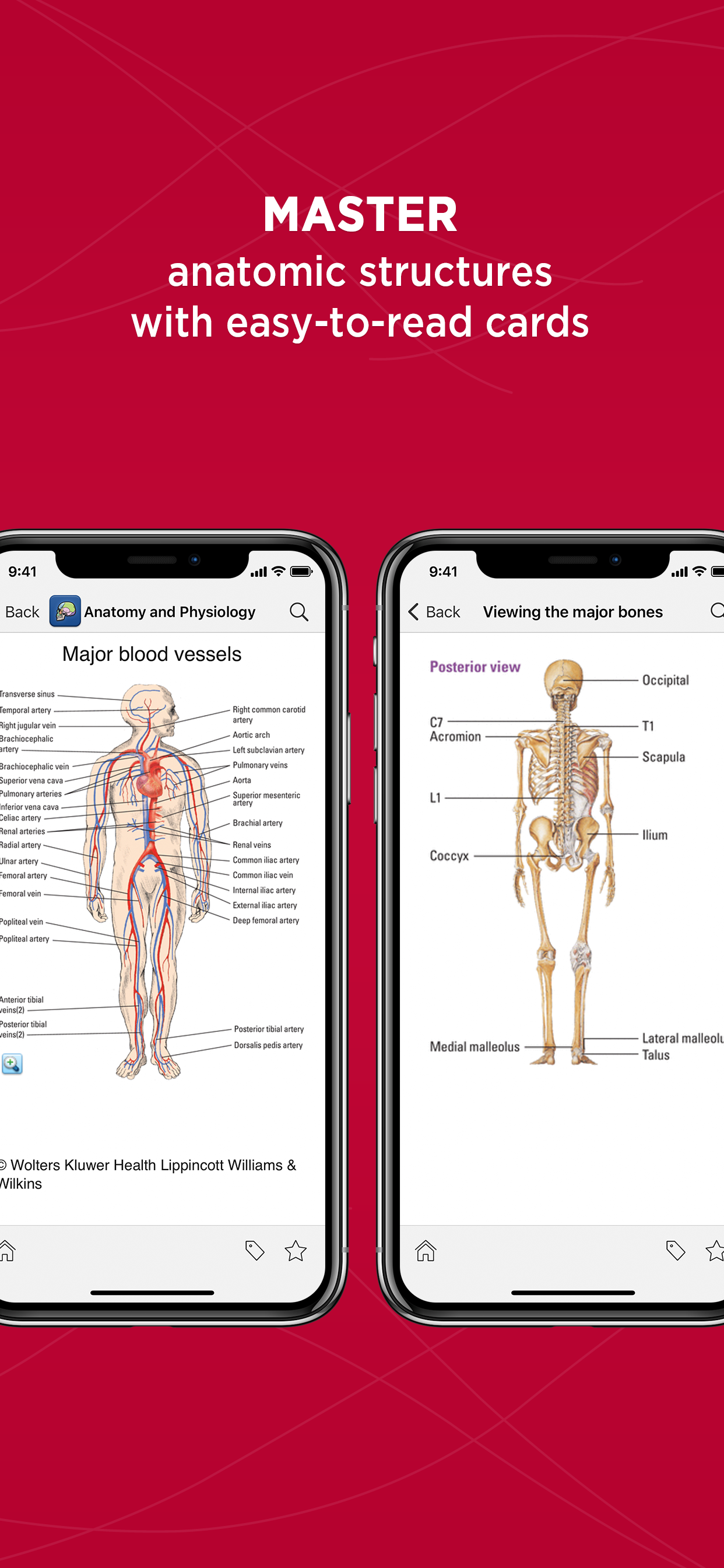 Unbound Medicine Anatomy Physiology Made Incredibly Easy App For